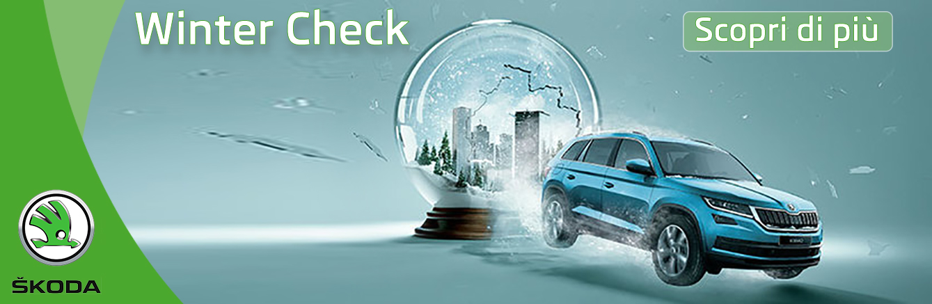Skoda Check-Up inverno