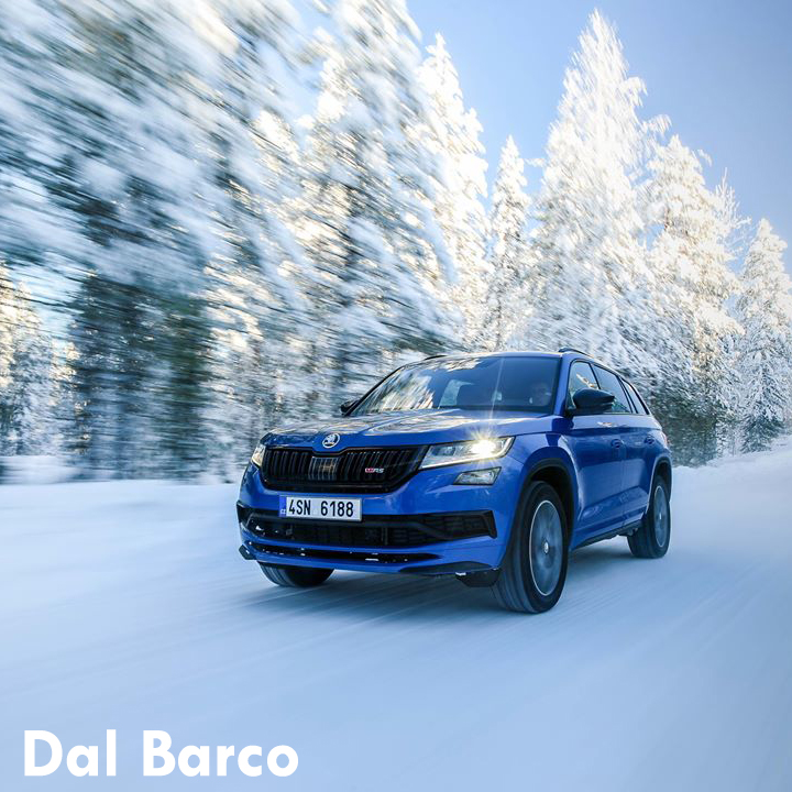 Skoda Check-Up inverno