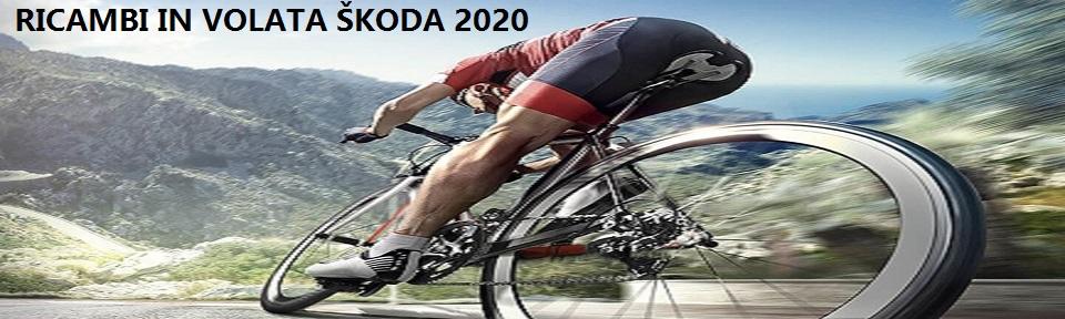 Ricambi in Volata ŠKODA 2020