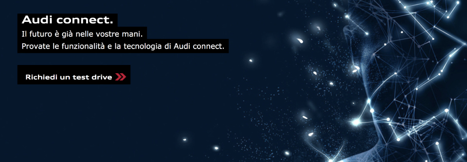 Mandolini Audi connect