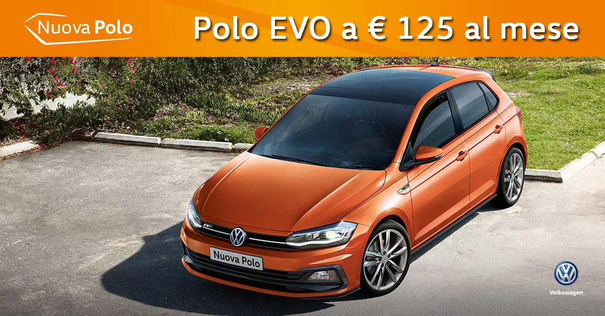 Polo EVO Comfortline a € 125 al mese