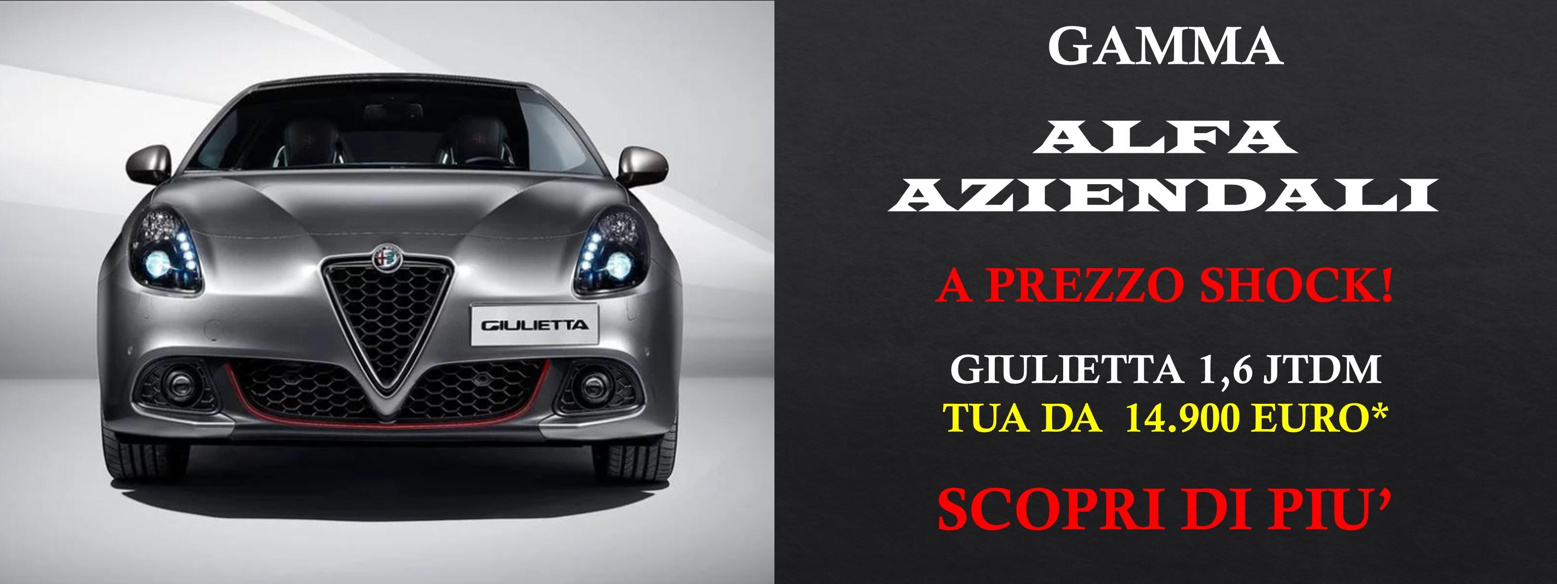 Alfa Aziendali  Prezzo Shock