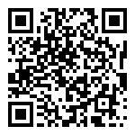 https://4tempi.com/ricerca-moto/usate/kawasaki/z-125/74797