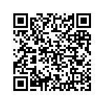 Bmw R 1100 Rt Abs Cat Usata   #87629
