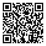 Bmw R 1200 R Abs Usata   #77192