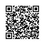 Bmw R 1250 R Abs Usata   #109054