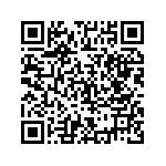 Honda X-Adv Abs Dct Usata   #98971