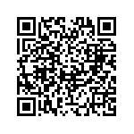 Piaggio Beverly 300 I.E. Usata   #98985