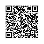 Sym Cruisym 300 Abs Usata   #98916